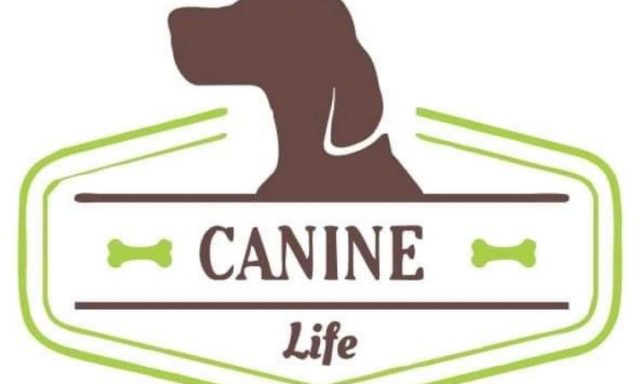 Canine Life